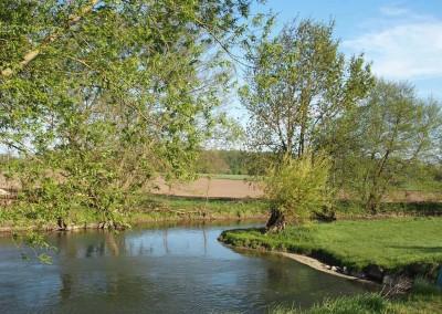 Ebersmunster - Le Ried et l'eau