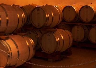 Cave vinicole de Cleebourg