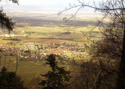 Vue depuis le sommet des 3 châteaux - Eguisheim