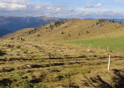 Paysage autour de la Ferme-auberge du Buchwald