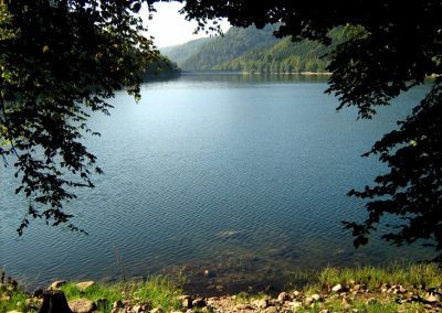 Lac de Kruth - Wildenstein