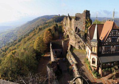 Chateau Haut-Barr