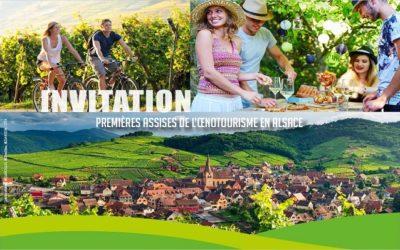 L'Alsace met en avant une partie de son identité : Ses vins !
